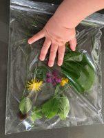 Nature Sensory Bag